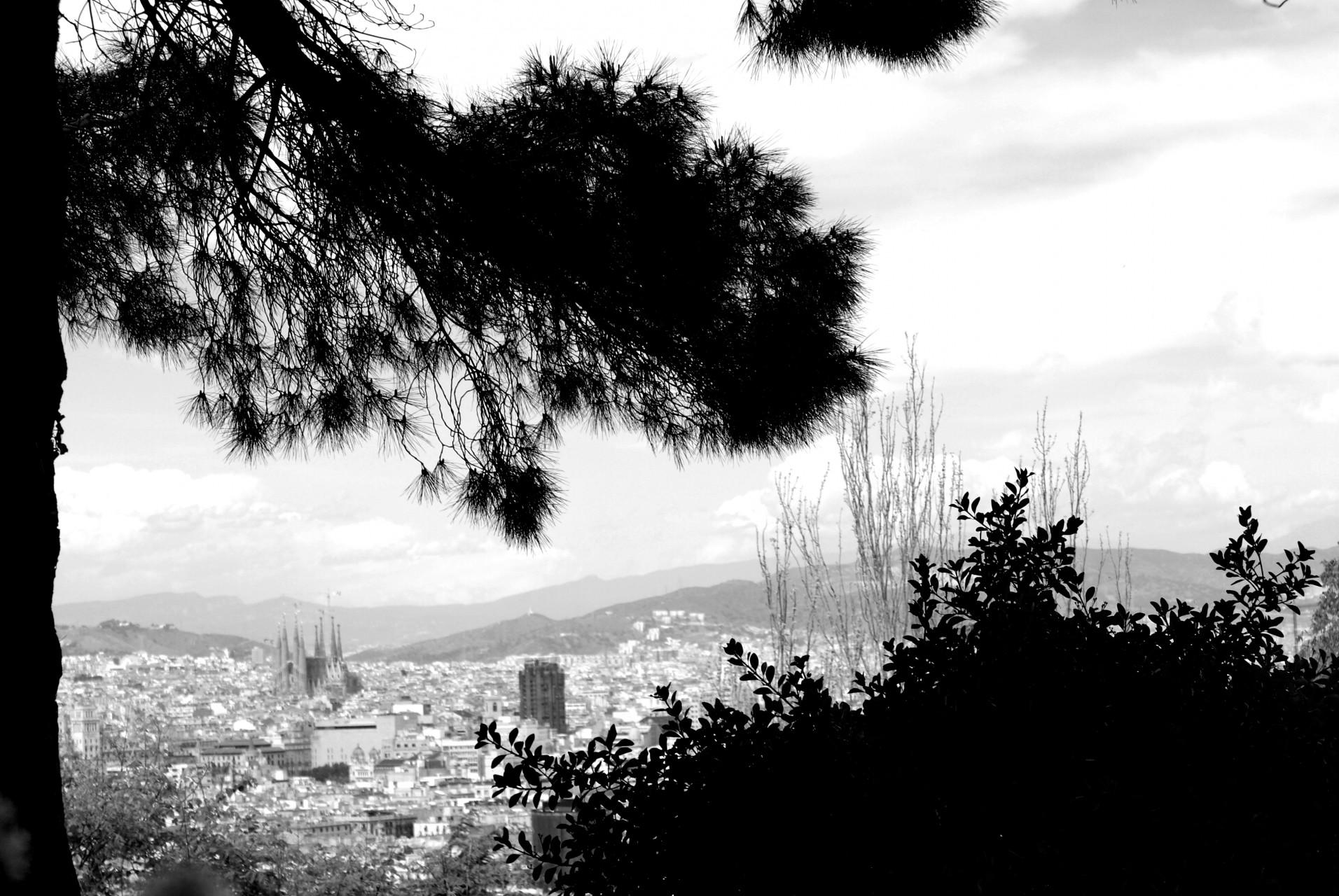 Barcelona - 2009