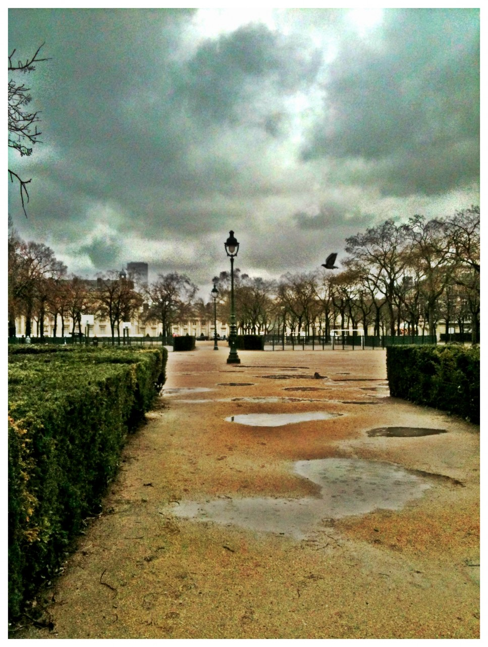 Paris VIIème