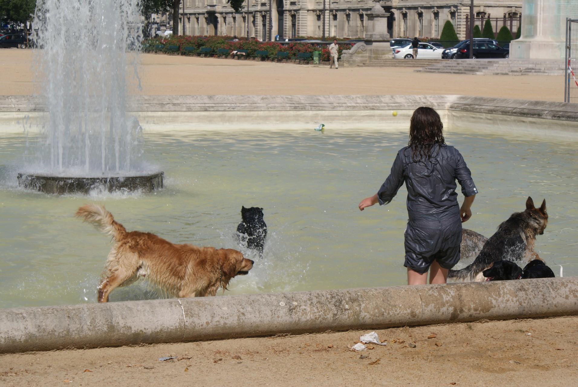 Paris VIIIème - 2010