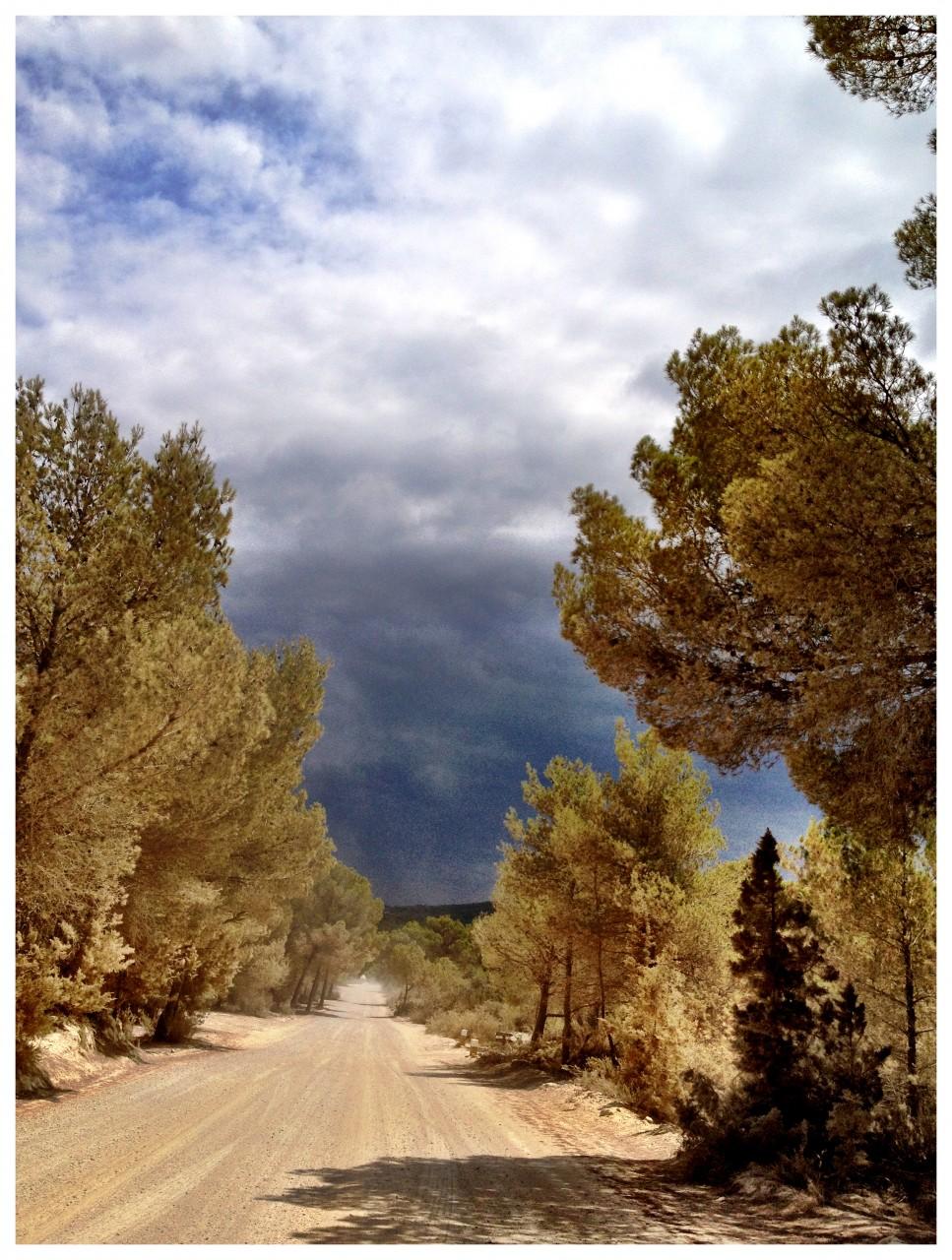 Ibiza - 2012