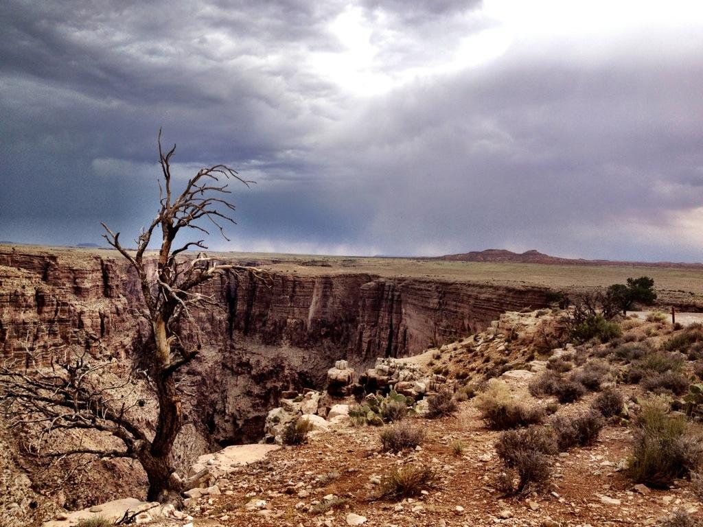 Colorado River - 2013