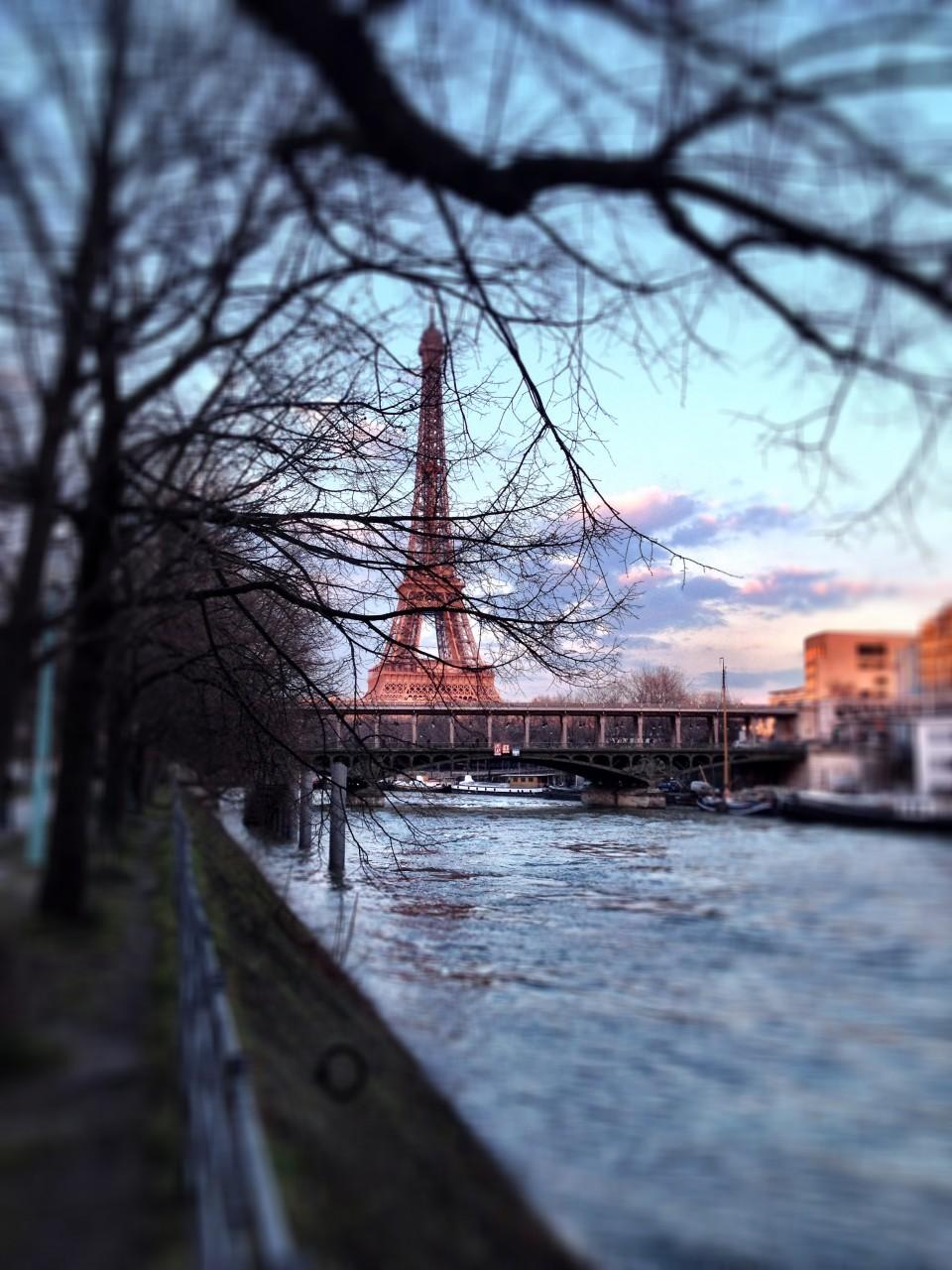 Paris XV - 2014