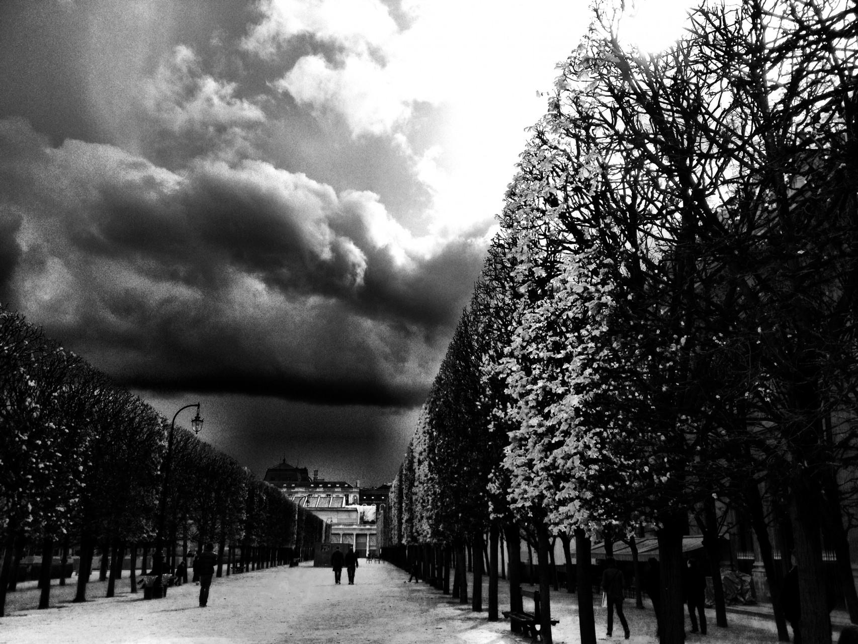 Paris II - 2014