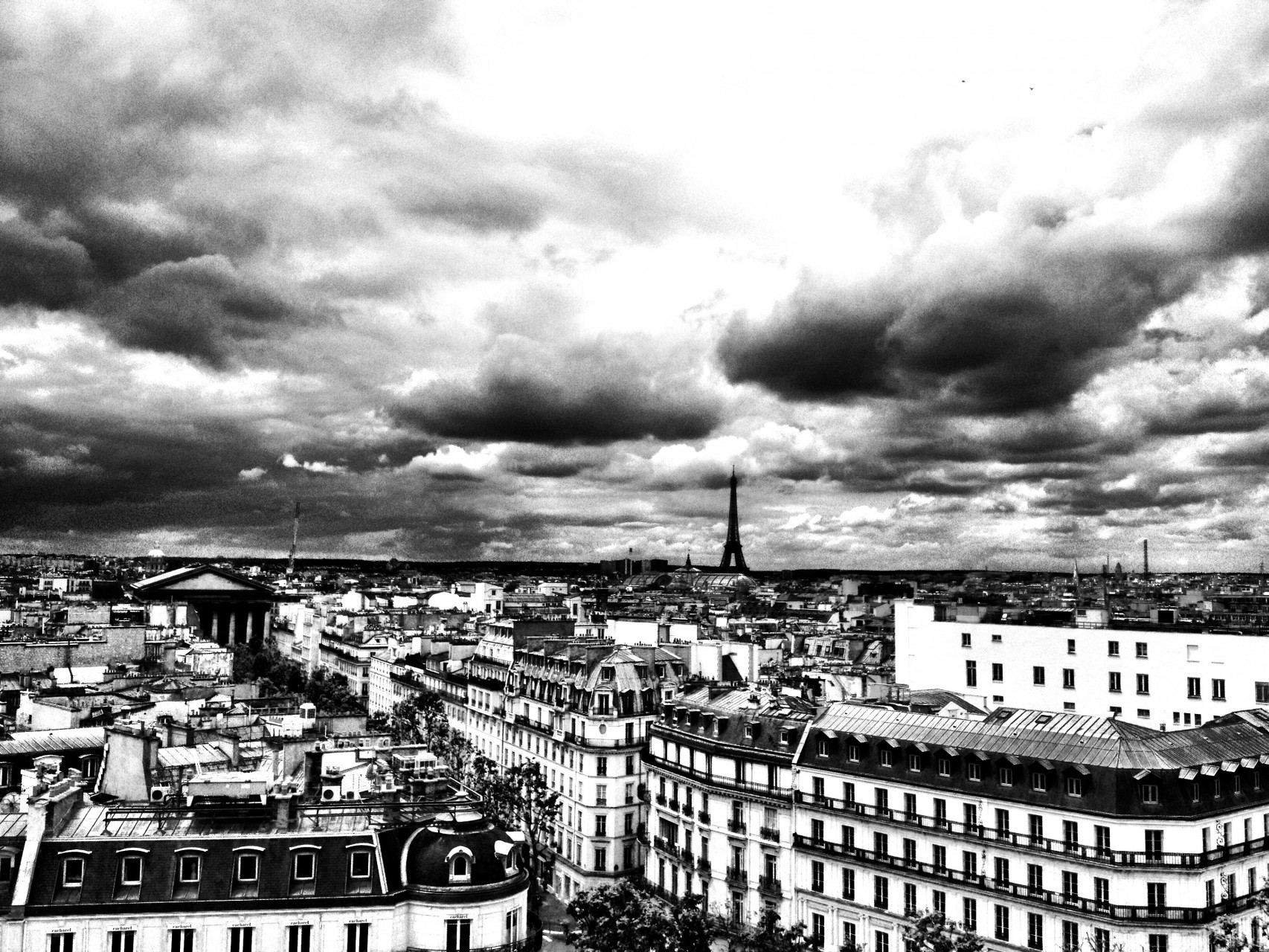 Paris IX - 2014