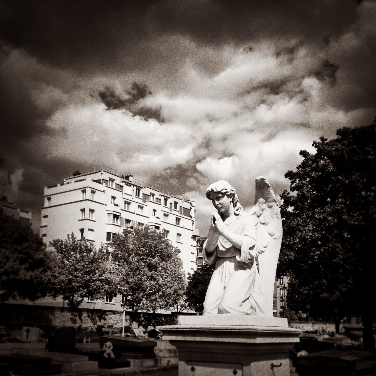 Cimetière Montrouge - 2015